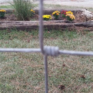 wrapped wire fence