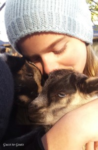 kid with goat kids